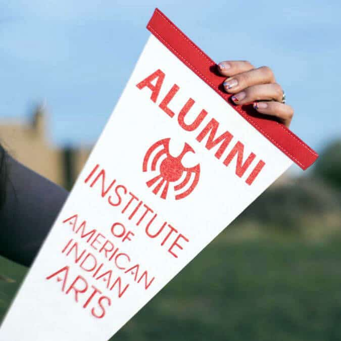 Important Announcement about the Alumni Council Election