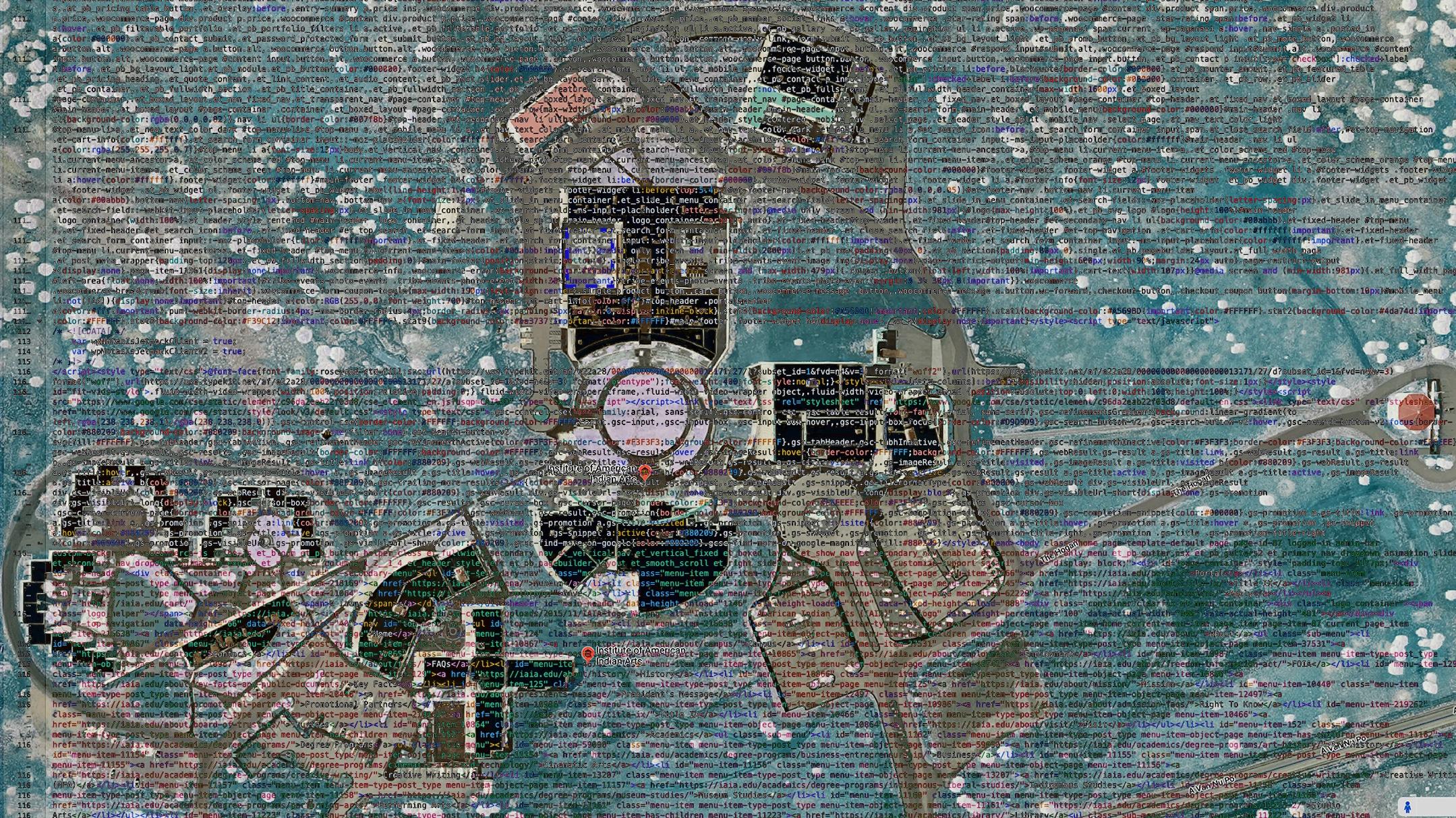 IAIA's Digital Landscape