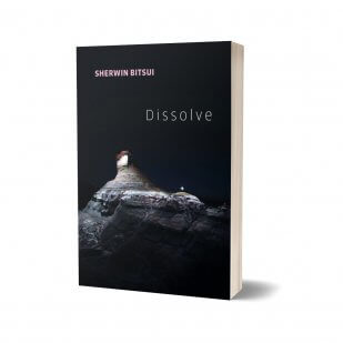Sherwin Bitsui's Dissolve